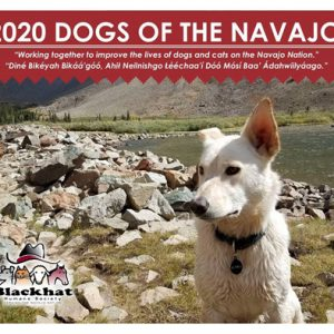 2020 DOGS OF THE NAVAJO CALENDAR